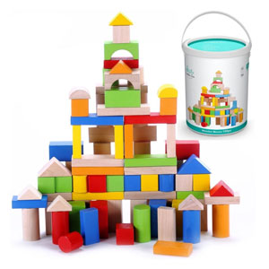 Preschool Toys Manufacturer in Delhi NCR